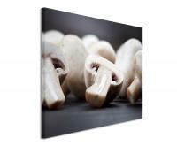 Leinwandbild Pilze