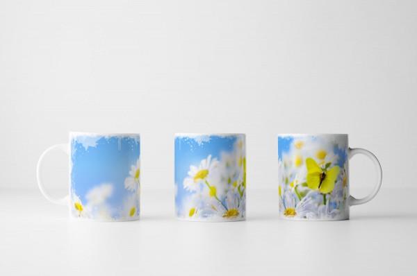 Tasse Gänseblümchen in der Frühlingssonne