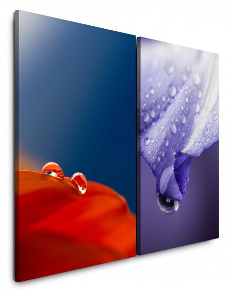 2 Bilder je 60x90cm Blumen Rot Blau Tropfen Morgentau Makro Erfrischend