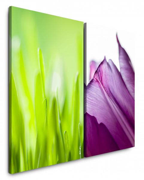 2 Bilder je 60x90cm Gras Grashalme Grün Blüte Violett Makro Nahaufnahme