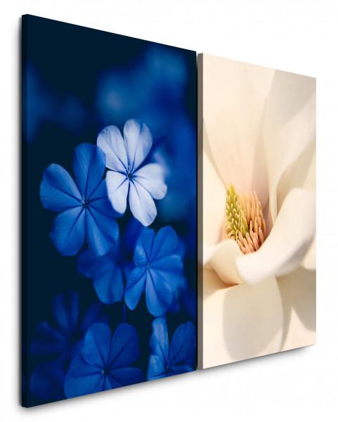 2 Bilder je 60x90cm Blau Blumen Blüten Weiß Nahaufnahme Tulpe Flora