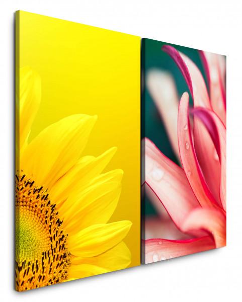 2 Bilder je 60x90cm Sonnenblume Gelb Sommer Wassertropfen Rosa Blumen Makrofotografie