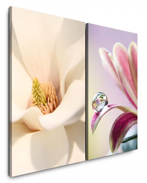 2 Bilder je 60x90cm Blüte Weiße Tulpe Wassertropfen Blumen Makro Nahaufnahme