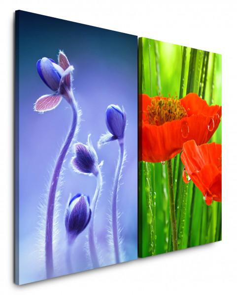 2 Wandbilderje 60x90cm Blumen Blau Rot Grün Nahaufnahme Tropfen Erfrischend