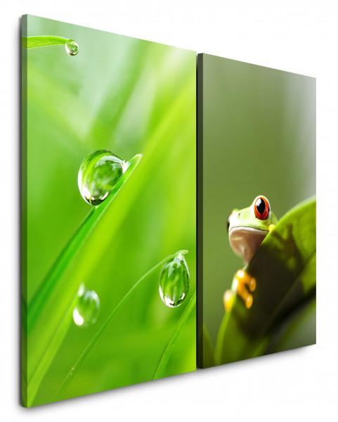 2 Bilder je 60x90cm Gras Grashalme Wassertropfen Grün Frosch Blatt Erfrischend