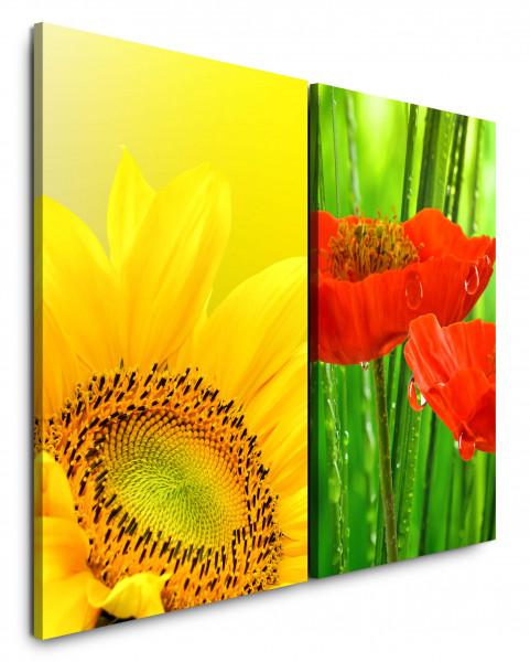 2 Bilder je 60x90cm Sonnenblume Gelb Wassertropfen Sommer Makro Rote Blüten