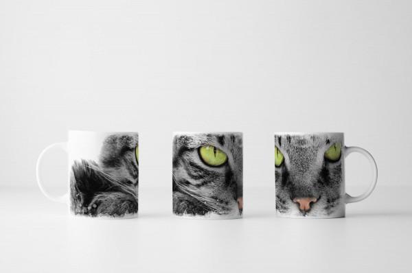 Tasse Hauskatze mit grünen Augen Porträt