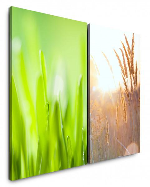 2 Wandbilderje 60x90cm Gras Grashalme Weizenfeld Sonne Sommer Grün Kornfeld