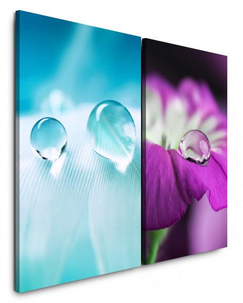 2 Bilder je 60x90cm Tropfen Makro Feder Weiß Blüte Violett Blume