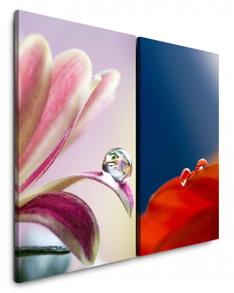 2 Bilder je 60x90cm Blumen Mohnblume Rot Tropfen Makro Blau Rosa