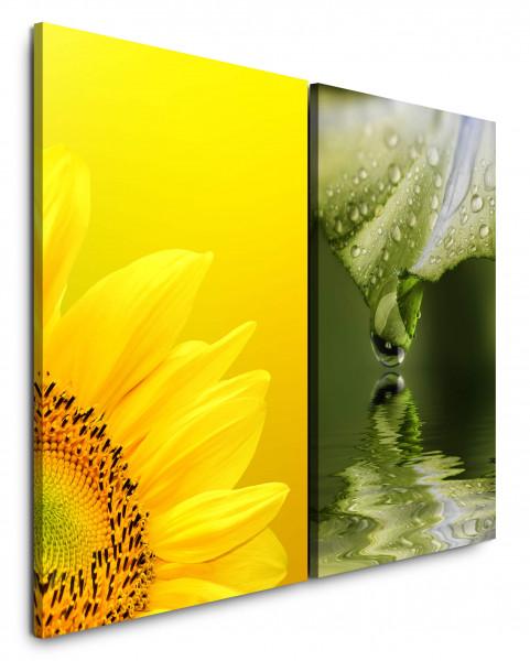 2 Bilder je 60x90cm Sonnenblume Gelb Tropfen Grün See Nahaufnahme Erfrischend