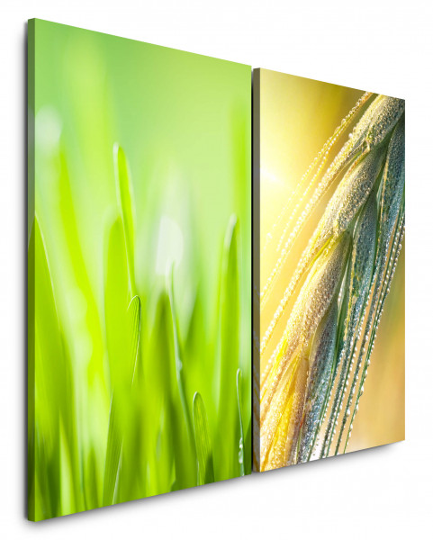 2 Bilder je 60x90cm Gras Grashalme Grün Weizen Nahaufnahme Makrofotografie Erfrischend