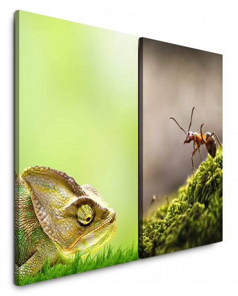 2 Bilder je 60x90cm Chamäleon Grün Nahaufnahmen Ameise Waldameise Makro Natur