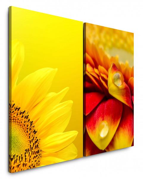 2 Bilder je 60x90cm Sonnenblume Gelb Orange Makro Sommer Sonne Tropfen