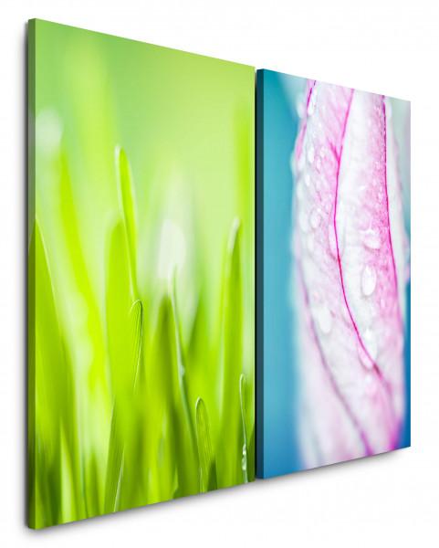 2 Bilder je 60x90cm Gras Grashalme Grün Frisch Wassertropfen Nahaufnahme Makrofotografie