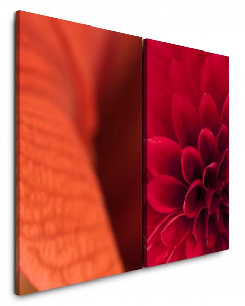 2 Bilder je 60x90cm Dahlie Blüten Rot Schlafzimmer Nahaufnahme Blumen Warm