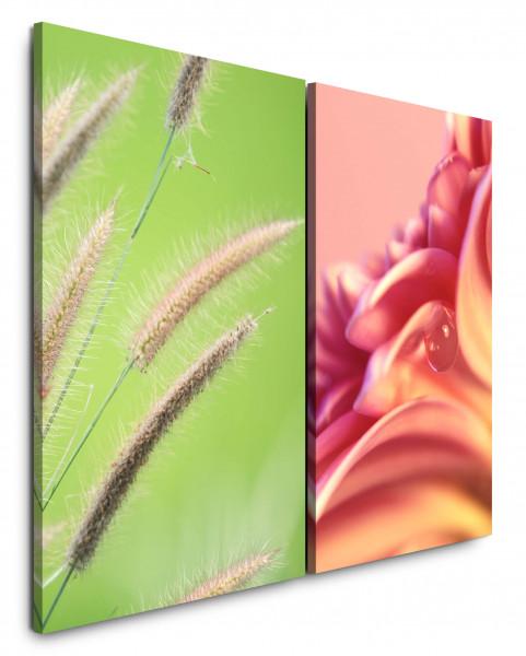 2 Wandbilderje 60x90cm Weizen Grün Tropfen Makro Blume Nahaufnahme Rosa