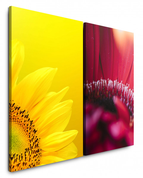 2 Bilder je 60x90cm Sonnenblume Gelb Rot Blüten Nahaufnahme Makro Sommer