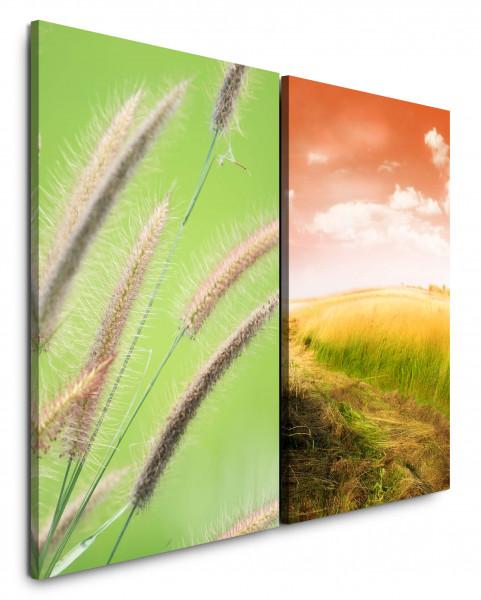 2 Bilder je 60x90cm Weizen Weizenfeld Roter Himmel Grün Horizont Sommer