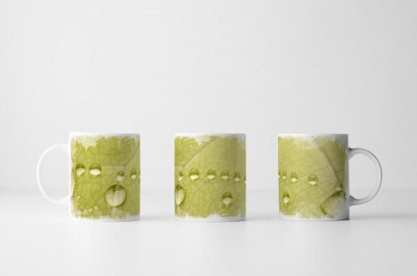 Tasse Grünes Blatt mit Makro Wassertropfen