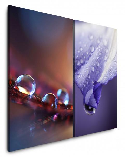 2 Bilder je 60x90cm Blüten Wassertropfen Blume Nahaufnahme Lila Großaufnahmen Harmonie