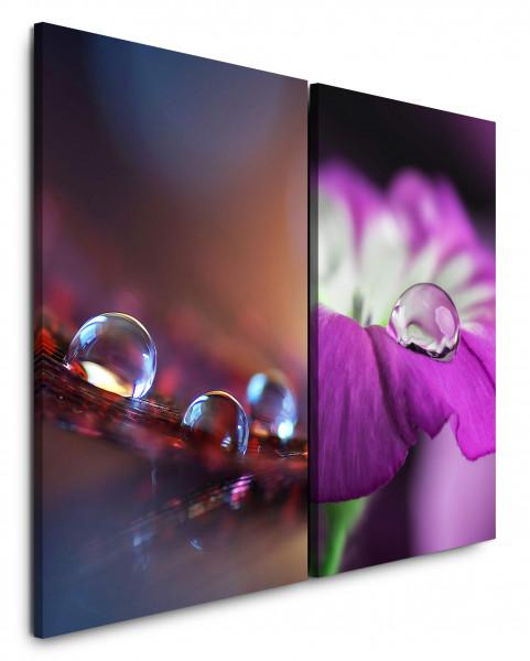 2 Wandbilderje 60x90cm Tropfen Wassertropfen Blumen Blüte Nahaufnahme Fotokunst Makrofotografie