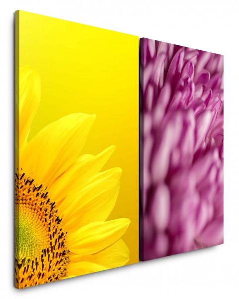 2 Bilder je 60x90cm Sonnenblume Gelb Makro Sommer Blumen Blüten Rosa