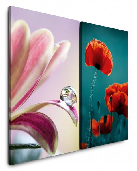 2 Bilder je 60x90cm Mohnblume Tropfen Blüten Blumen Rot Grün Nahaufnahme