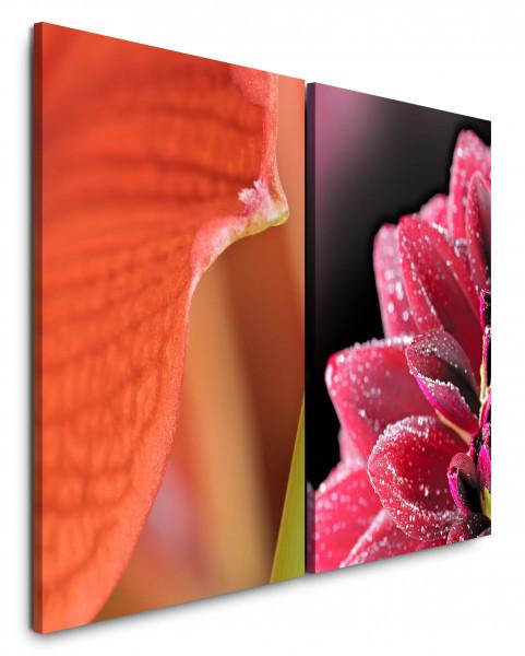 2 Bilder je 60x90cm Dahlie Blumen Blüten Rot Makro Fotokunst Makrofotografie