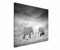 Premium Leinwandbild Zwei Elefanten in der Savanne