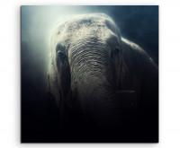 Premium Leinwandbild Elefant im Nebel