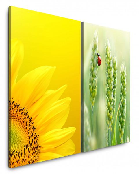 2 Bilder je 60x90cm Sonnenblume Gelb Marienkäfer Sommer Weizen Grün Sommer