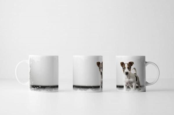 Tasse Süßer Hundewelpe vor weißer Wand