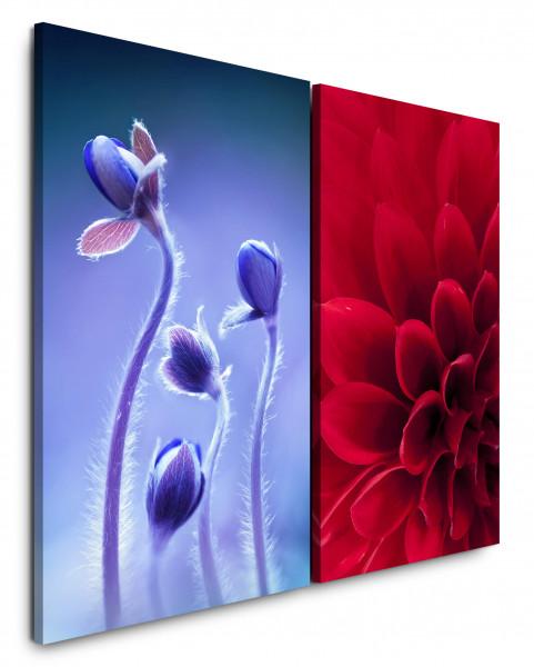 2 Bilder je 60x90cm Dahlie Blumen Rot Blau Nahaufnahme Makro Fotokunst