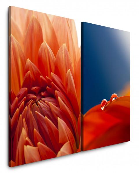 2 Wandbilderje 60x90cm Dahlie Blumen Makro Rot Blau Tropfen Blüte