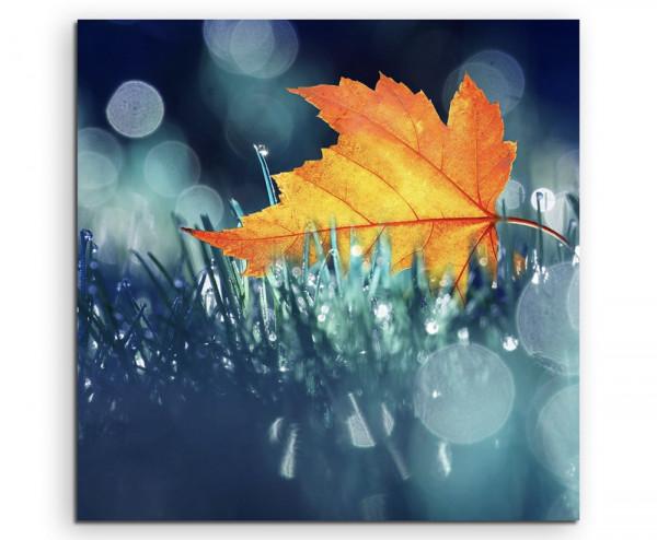 Leinwandbild Herbst Laubblatt im Gras in herbstlichen Tönen