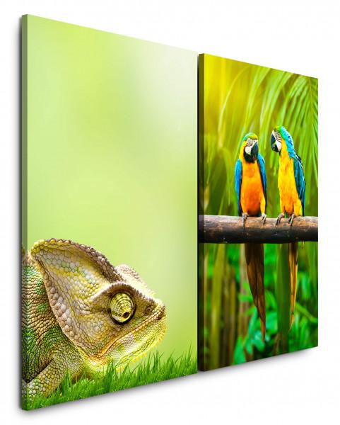 2 Bilder je 60x90cm Chamäleon Grün Papageien Paradies Sommer Dschungel Palme