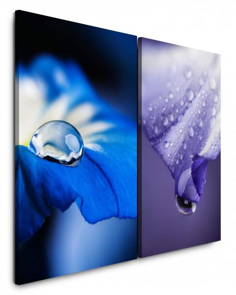 2 Bilder je 60x90cm Blumen Wassertropfen Blau Viellot Blüten Nahaufnahme Makrofotografie
