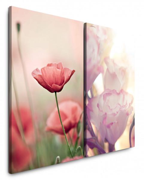 2 Bilder je 60x90cm Mohnblume Weiße Tulpe Blumen Rot Sonnenlicht Nahaufnahme