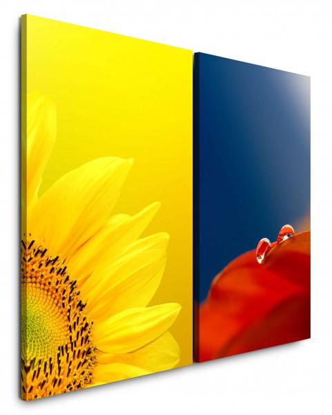 2 Bilder je 60x90cm Sonnenblume Gelb Rot Tropfen Makro Frisch Blumen
