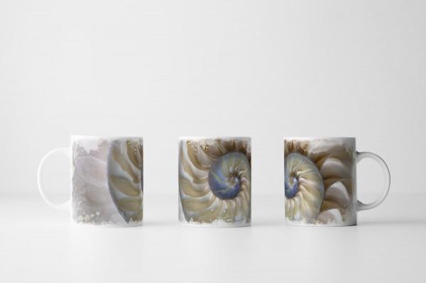Tasse Fibonacci Muschel
