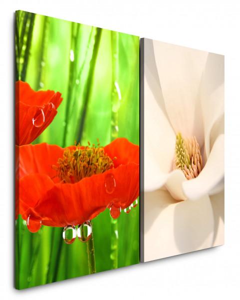 2 Bilder je 60x90cm Rote Blume Weiße Tulpe Grün Frisch Makrofotografie