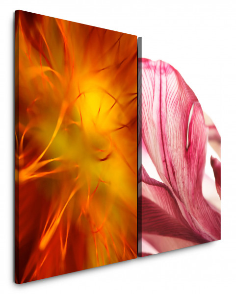 2 Bilder je 60x90cm Orange Rosa Blüten Nahaufnahme Makro Blumen Orchidee