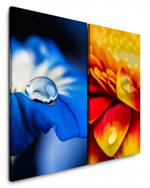 2 Bilder je 60x90cm Blumen Blüten Blau Wassertropfen Orange Nahaufnahme Makrofotografie