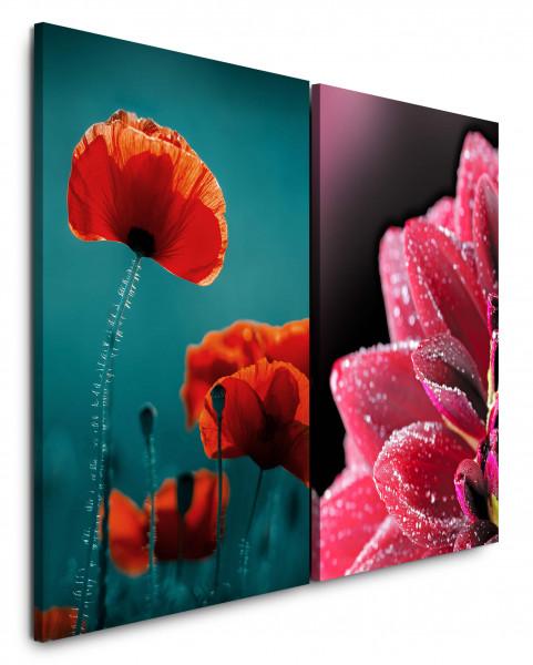 2 Bilder je 60x90cm Mohnblume Rot Grün Blüten Nahaufnahme Blumen Mohn