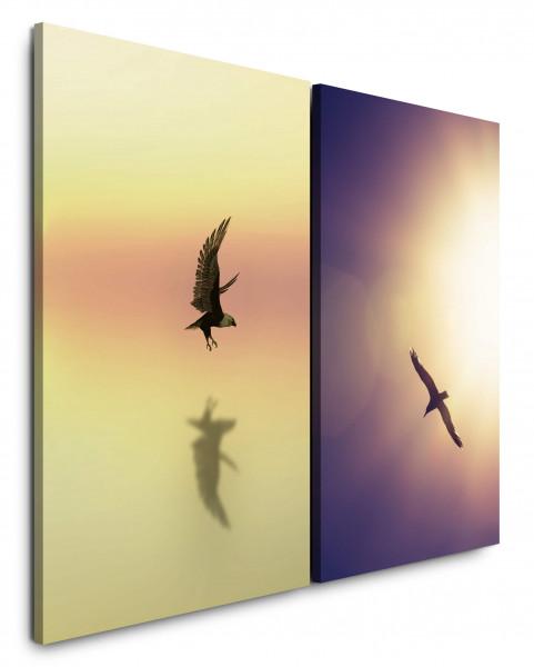 2 Bilder je 60x90cm Himmel Adler Weißkopfseeadler Möwe Sonnenstrahl Freiheit Freedom