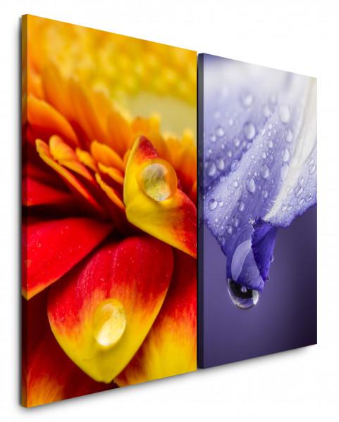 2 Wandbilderje 60x90cm Tropfen Orange Gelb Viellot Nahaufnahme Blumen Erfrischend