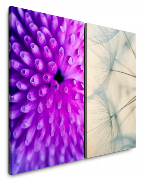2 Bilder je 60x90cm Koralle Unterwasser Pusteblume Viellot Nahaufnahme Beruhigend Makrofotografie