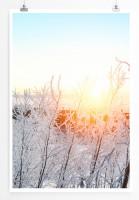 Poster Winterlandschaft bei Sonnenaufgang