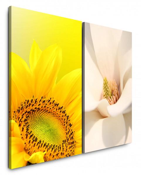 2 Bilder je 60x90cm Sonnenblume Gelb Weiß Blüte Sommerlich Schön Makro